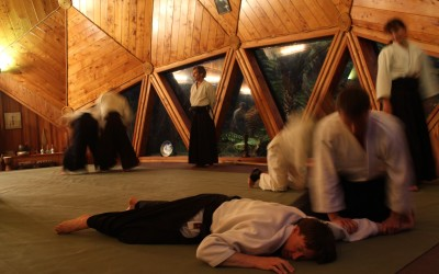 The Koru Dojo Sessions, review by Colin Jowett