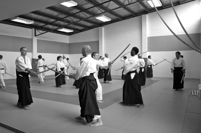 Calm and Storm Martial Arts Kenjutsu Koryu Budo