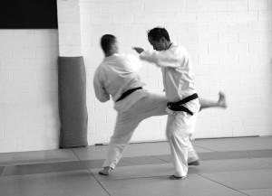 Aunkai Akuzawa & Watanabe Kick