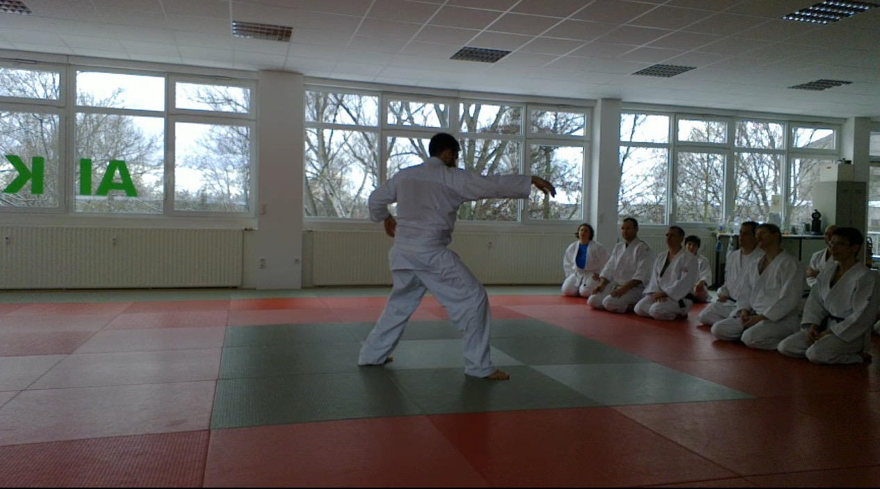 Calm and Storm Filip Maric Aikido Kenjutsu Aunkai Frankfurt Jan 2016 10