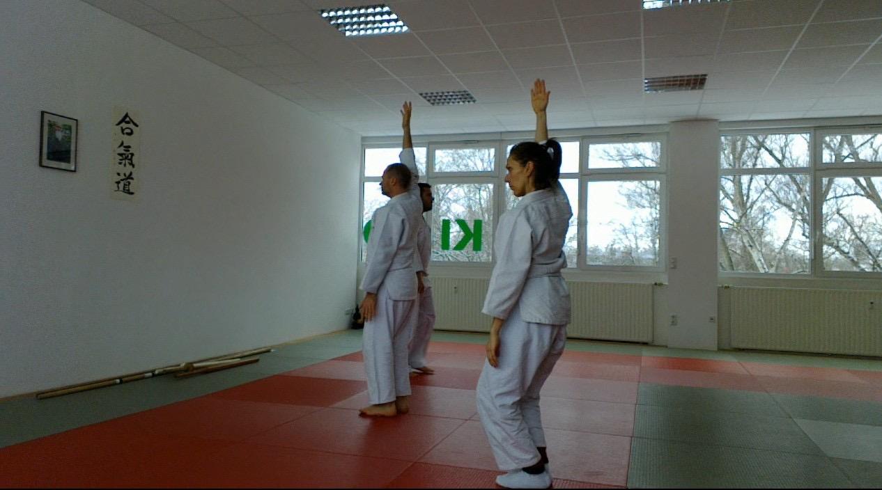 Aikido Kenjutsu Aunkai  Seminar Frankfurt Jan 2016 2