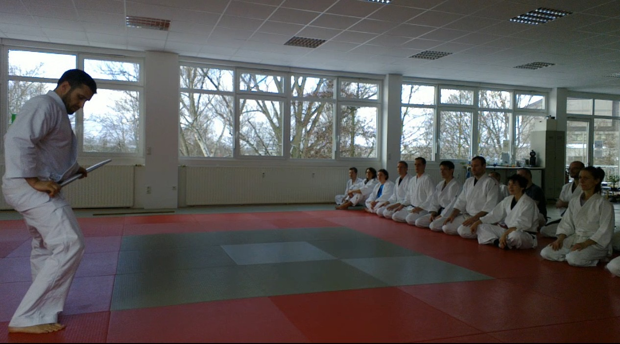 Calm and Storm Filip Maric Aikido Kenjutsu Aunkai  Frankfurt Jan 2016 5