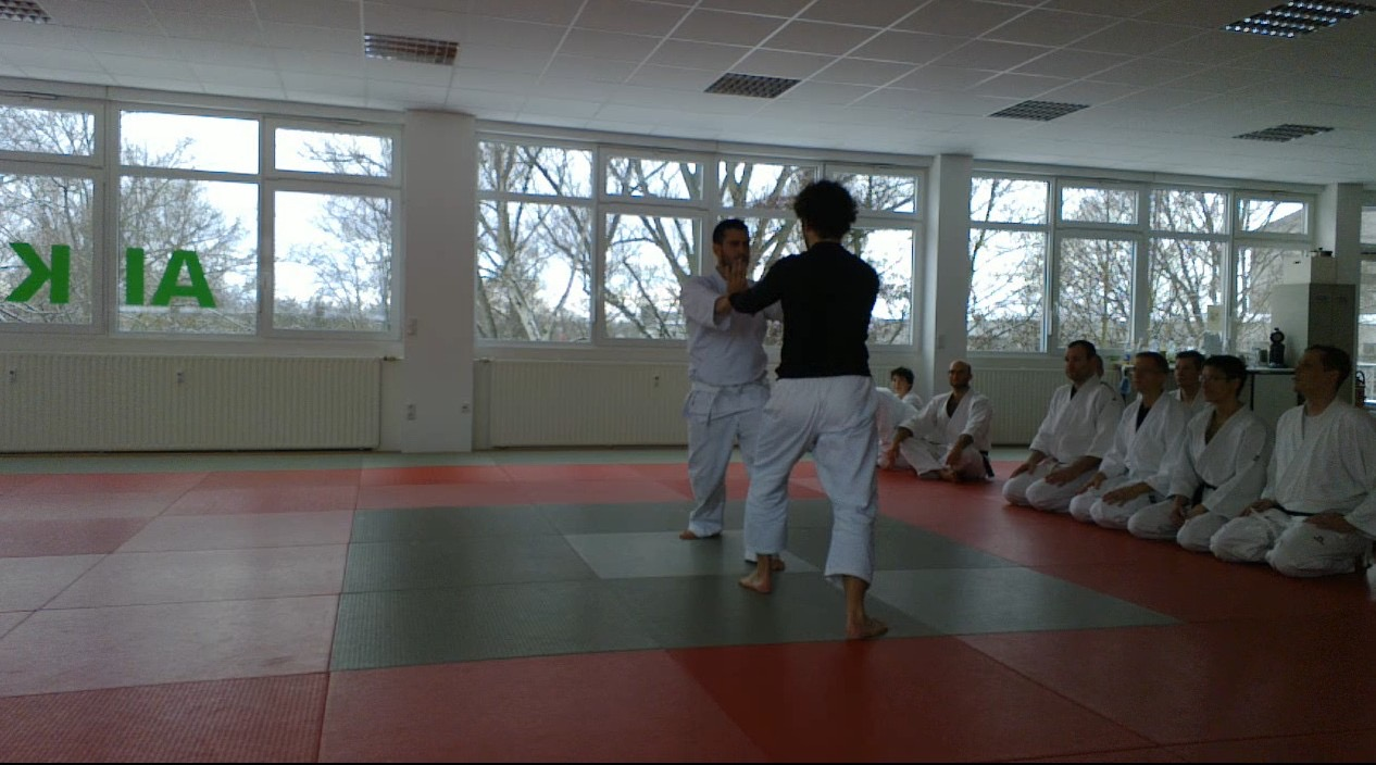 Calm and Storm Filip Maric Aikido Kenjutsu Aunkai  Frankfurt Jan 2016 7