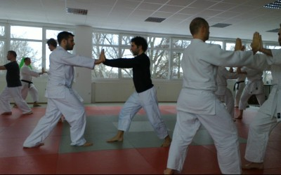 Budo Seminar with Filip Maric, review by Eric Steeves