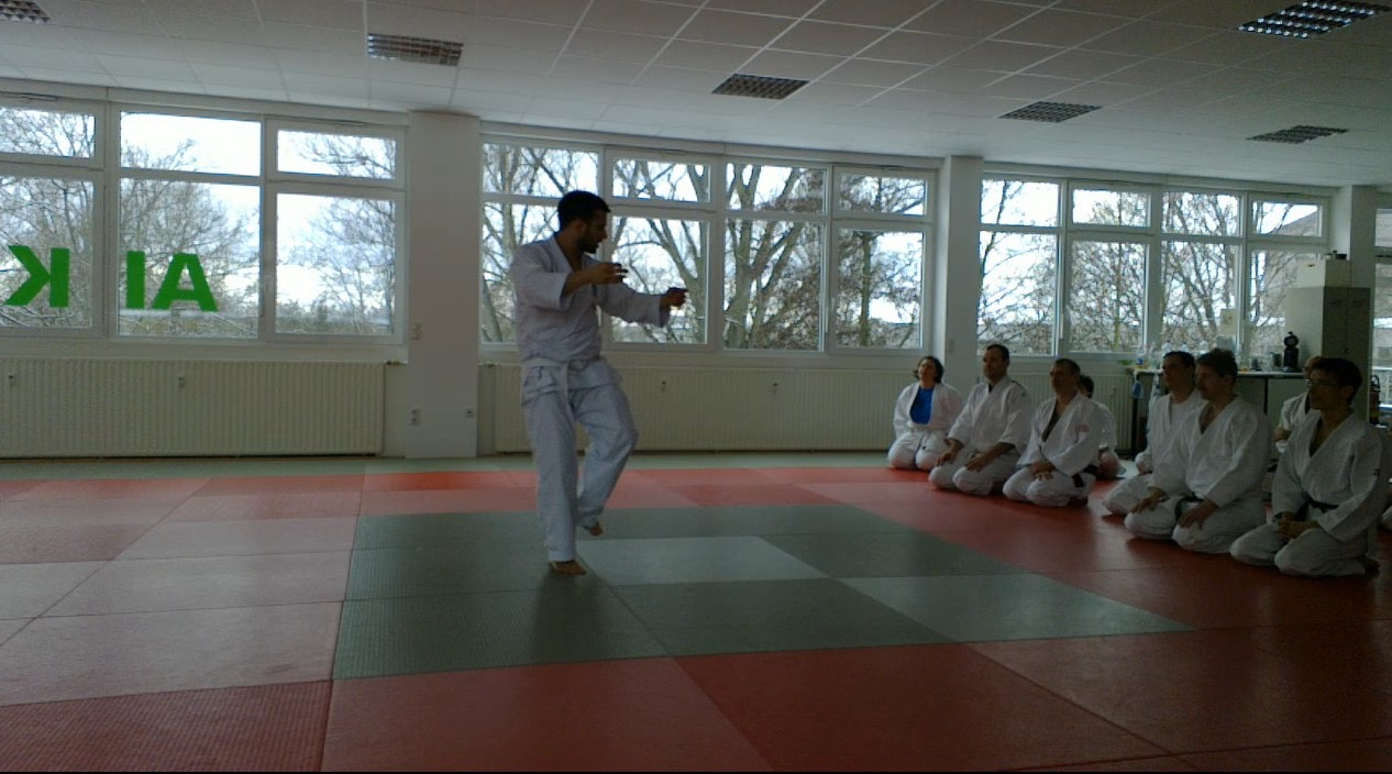 Calm and Storm Filip Maric Aikido Kenjutsu Aunkai  Frankfurt Jan 2016 9