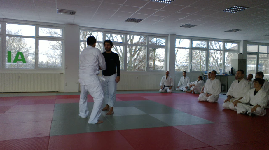 Calm and Storm Filip Maric Eric Steeves Aikido Kenjutsu Aunkai Frankfurt Jan 2016