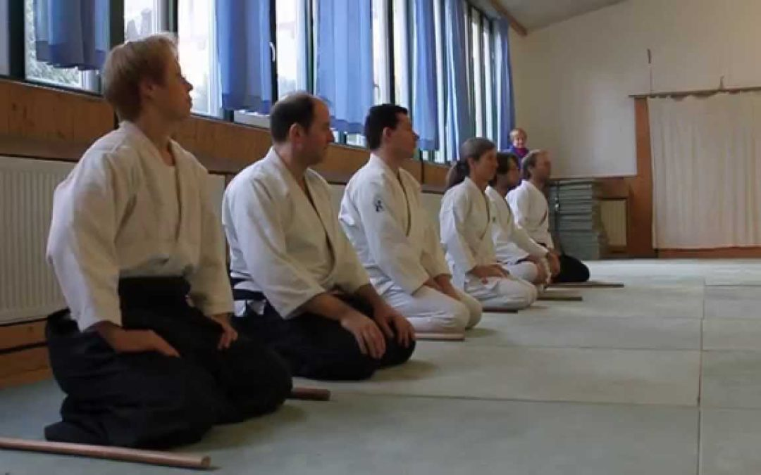 6 August 2016 Aunkai & Aikido Seminar with Filip Maric
