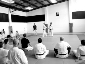 Calm and Storm Martial Arts - Events Seminars Workshops Aikido Aunkai Systema Kenjutsu
