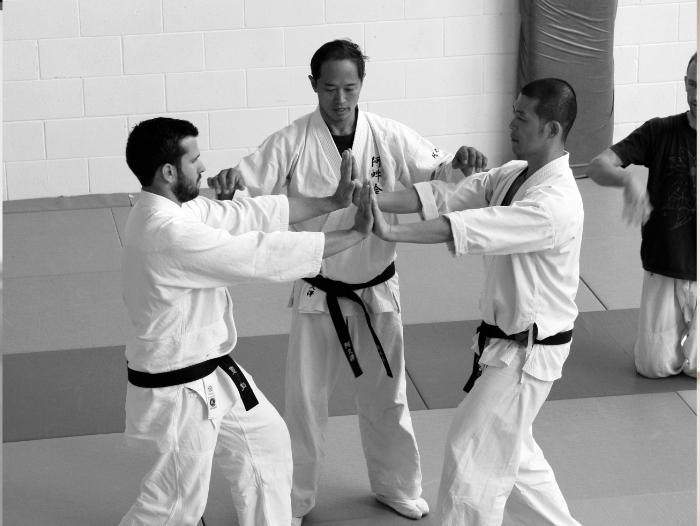 Aunkai with Akuzawa Minoru Sensei, Manabu Watanabe & Filip Maric (Nov 2014, Auckland/NZ)