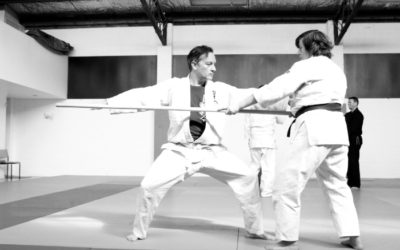 Aunkai Bujutsu Interim Report part 2: Training with a Bo
