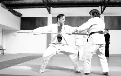 Aunkai Bujutsu Interim Report part 2: Training with a Bo