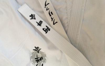 Aunkai Bujutsu Interim Report part 1: Weight under Buoy