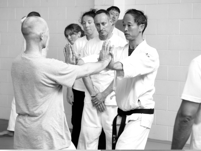 Calm and Storm Martial Arts - Aunkai Push walking with Akuzawa Minoru Sensei (Nov 2014, Auckland/NZ)