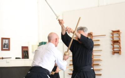 Impressions from Shiseikan Budo Kashima Kenjutsu practice