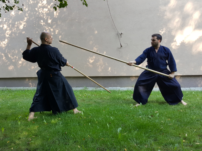 calm-an-storm-martial-arts-budojo-shiseikan-budo-kashima-shin-sojutsu-hazushi-zuki-oikomi2