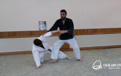 Aikido and Aunkai seminar at Aikido Dojo Giessen (Video)