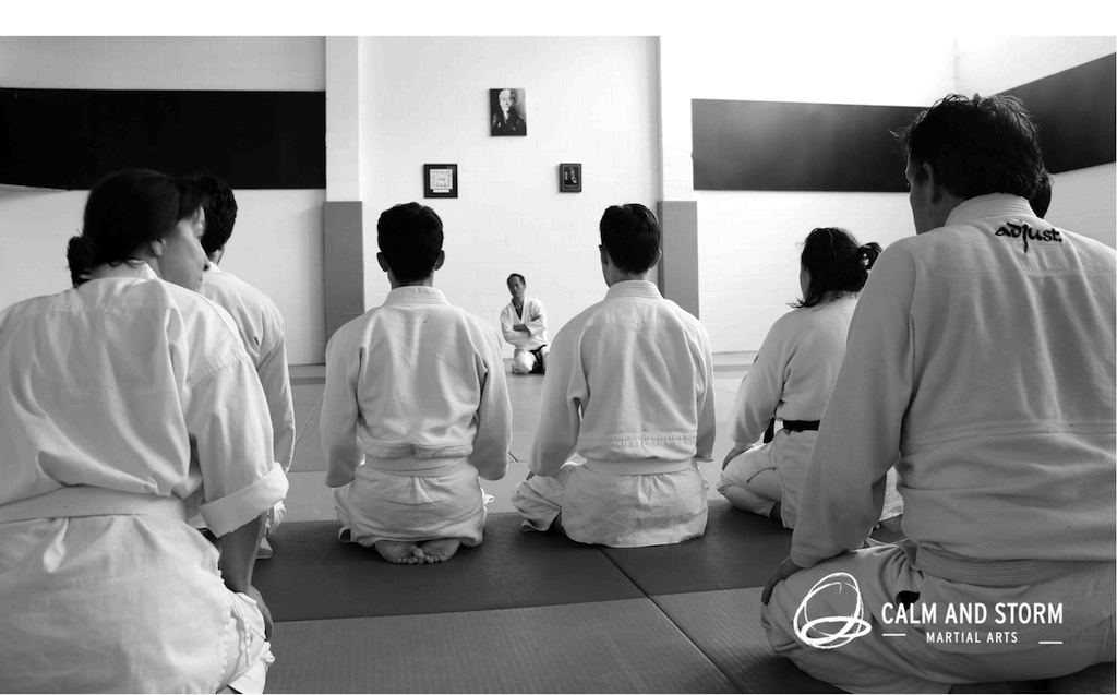 Aunkai Tour NZ 2016 with Akuzawa Minoru Sensei – Review by R. Gupta