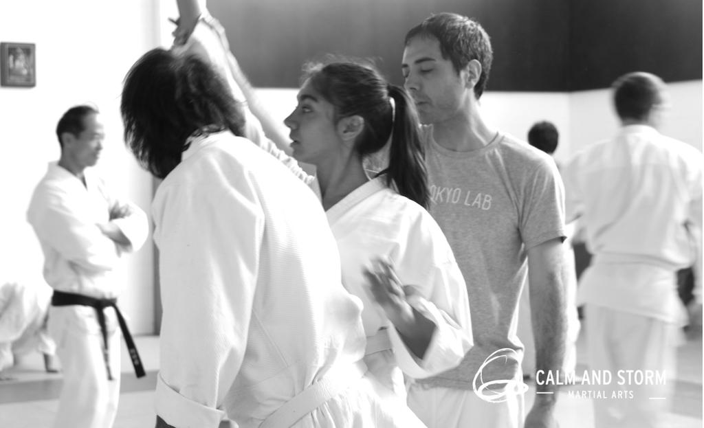 Calm and Storm 2016_11 Aunkai Seminar Auckland IMG_4116 BWweb