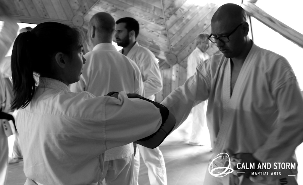 Calm and Storm Martial Arts 2016_11 Aunkai Koru Dojo IMG_4915 BWweb