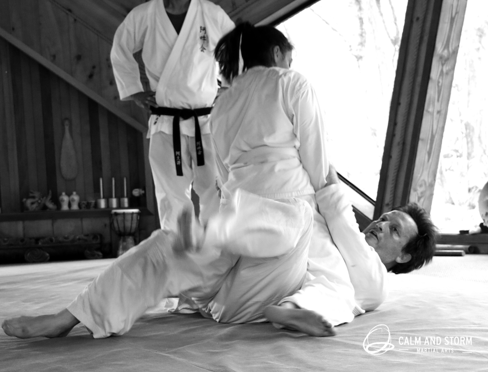 Calm and Storm Martial Arts 2016_11 Aunkai Koru Dojo IMG_5694 BWweb